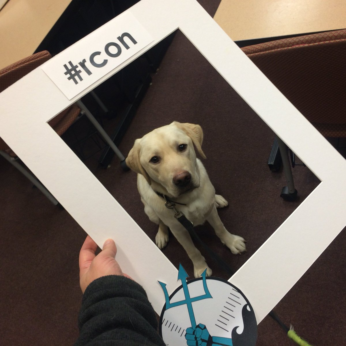 rcon hashtag on Twitter
