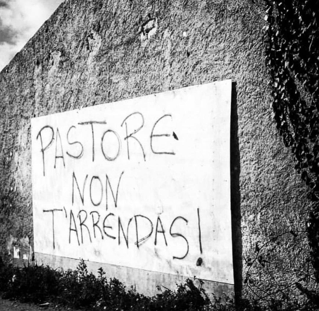 Simone Senna's photo on #iostoconipastorisardi