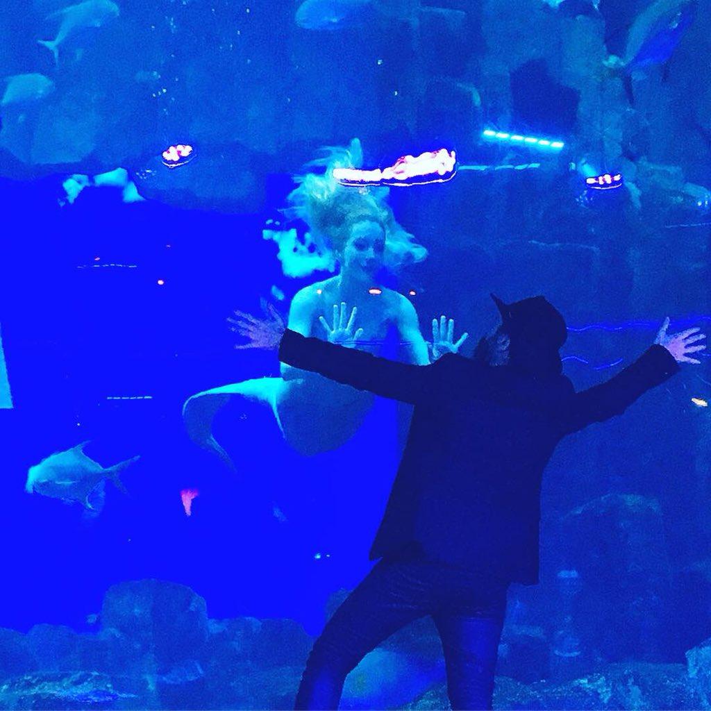 #Concert et #lectures hier soir autour d'Une sirène à Paris, nouveau #roman de @MathiasMalzieu publié chez @AlbinMichel 🧜♀️ Moment magique à l'@AquariumdeParis ! #sirene #livres #bookblog