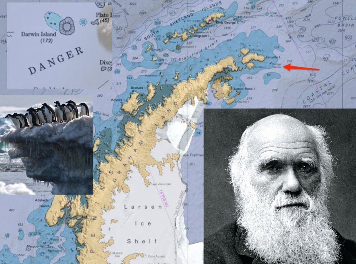 The Antarctic Report's photo on Charles Darwin
