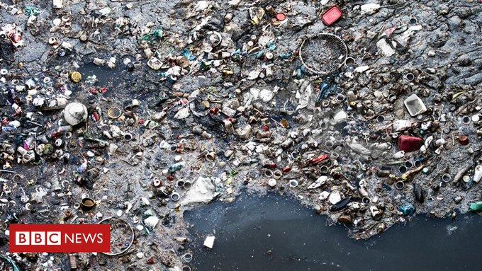 BBC News - Environment Photo