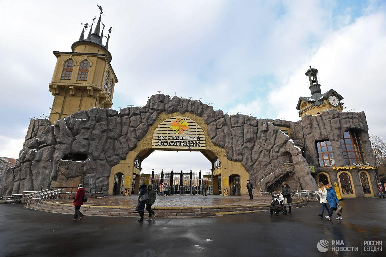 Картинки, картинки московского зоопарка распечатать