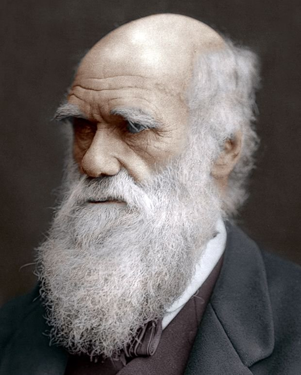 Canal do Ot├Аrio's photo on #darwinday