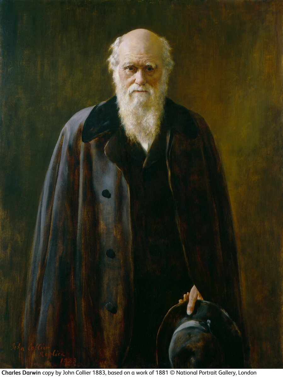 Portrait Gallery's photo on Charles Darwin