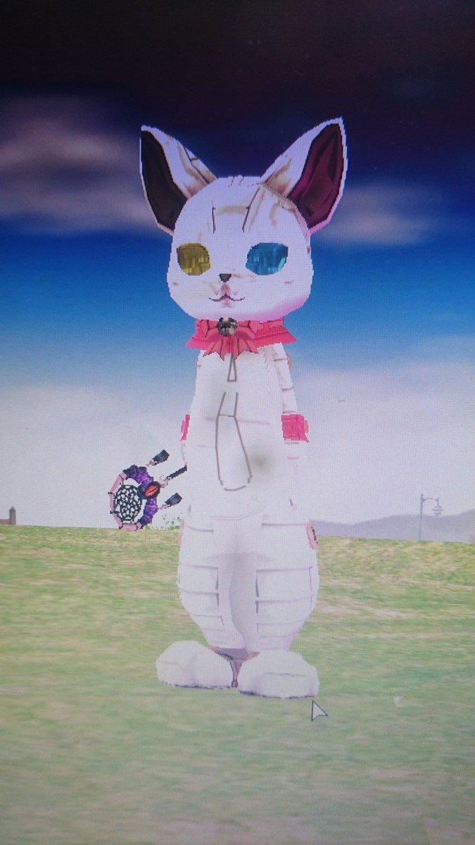 アレス🐬🐲🐑🐤@猫になりたいさんの投稿画像
