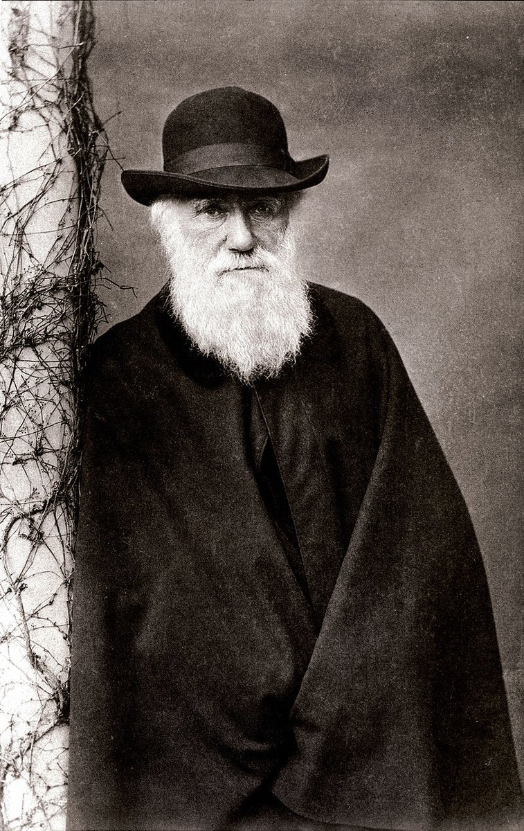 American Museum of Natural History's photo on Charles Darwin