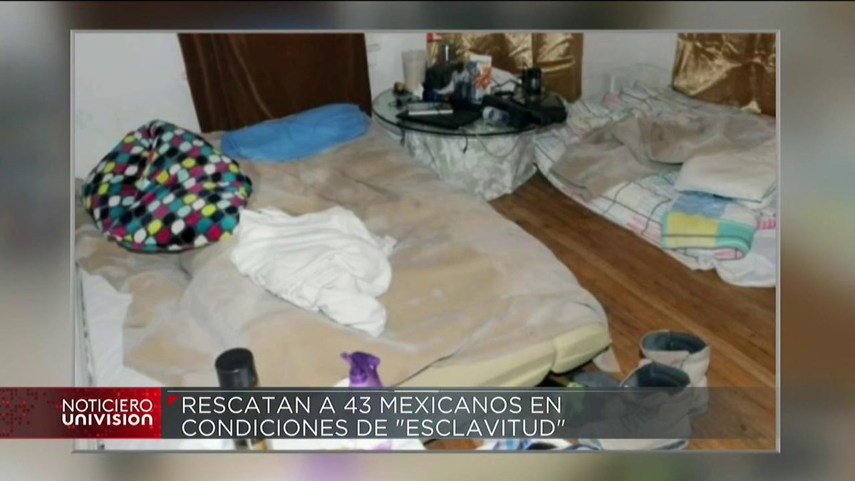 Univision Noticias's photo on rescatan a 43