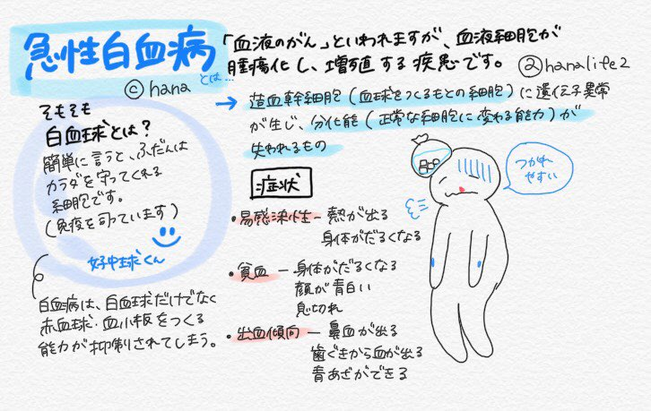 はな🌸看護師デザイナー@充電中's photo on ドナー登録