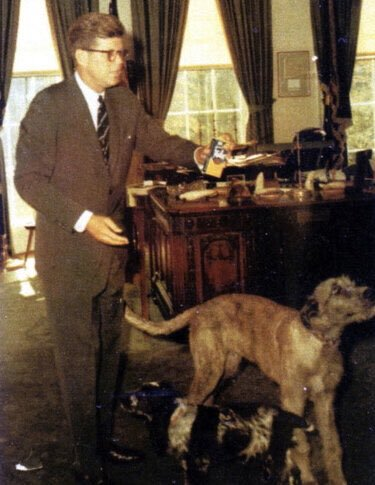 JFK feeding his dogs, Oval Office: <br>http://pic.twitter.com/AbOEAqmNYS