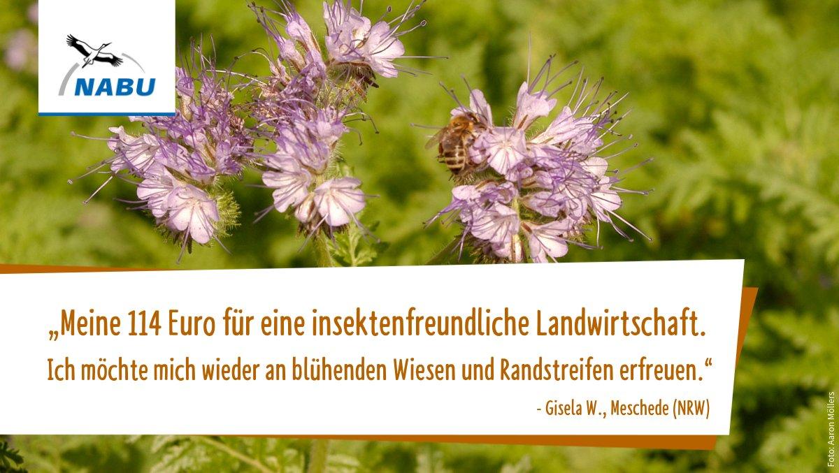 NABU e.V.'s photo on landwirtschaft