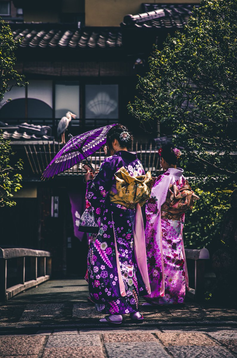 Adventure Of Travel on Twitter: Gorgeous Japanese ladies in purple Kimonos 💖💖💖 #japan #japanes #JapanTravel #kimono #fashion #fashionaddict #woman #travel #Beautiful #beautifullife #beauty #travelinspires #photo #photography #Purple…