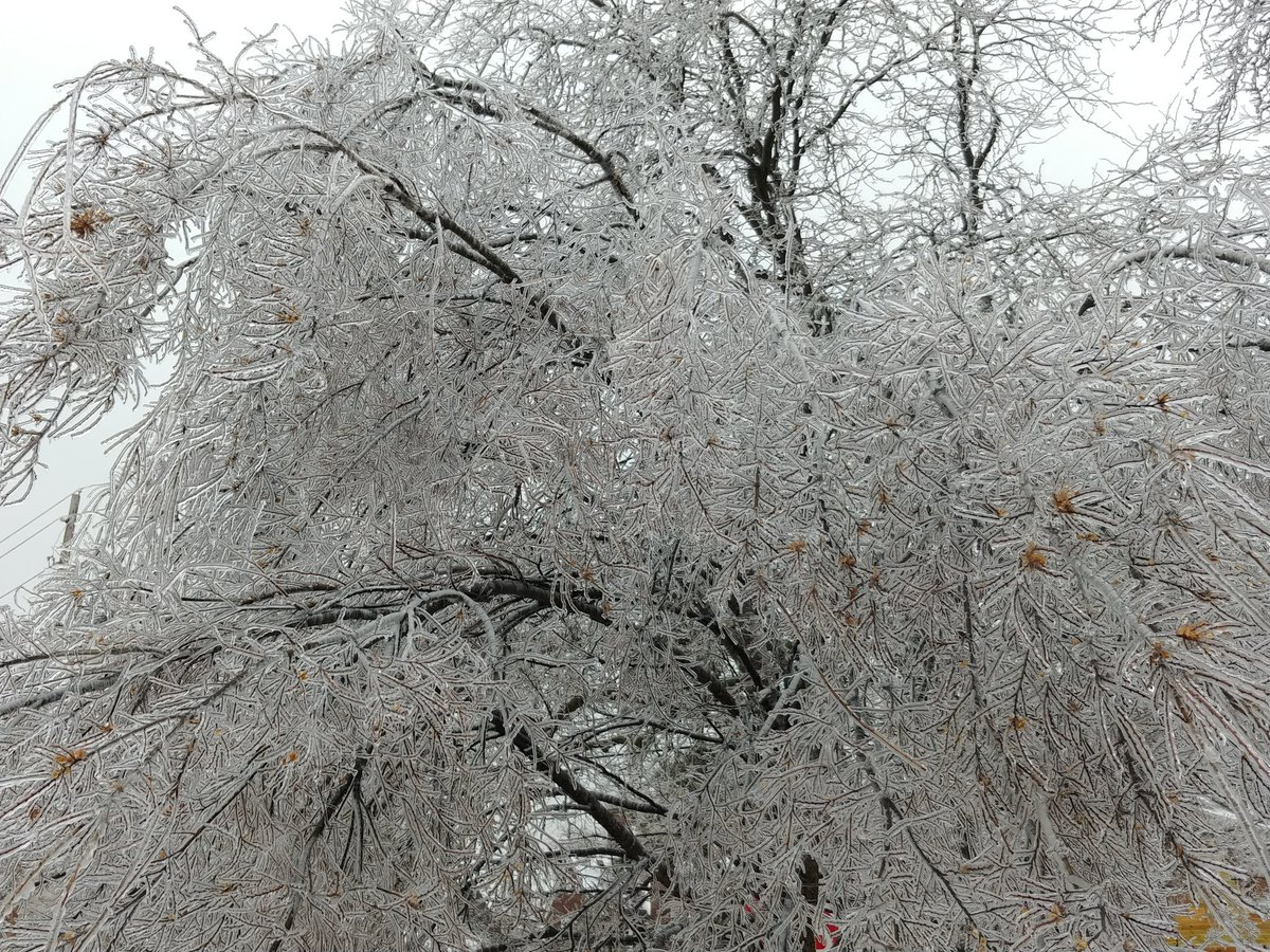 Toledo OH ice storm @weatherchannel <br>http://pic.twitter.com/AS1l1N6UbI
