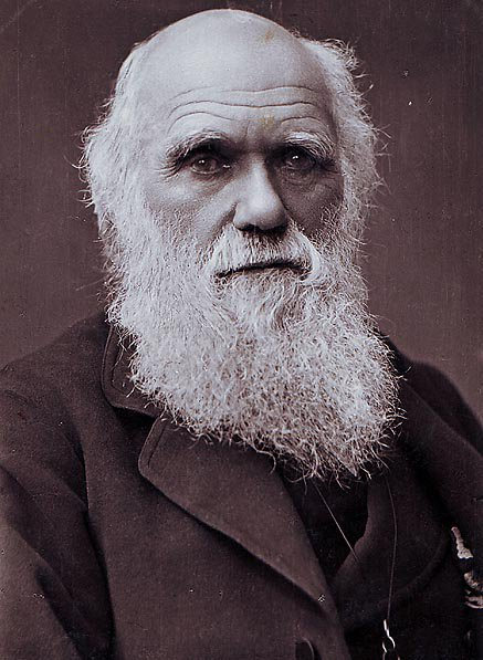 NOVA | PBS's photo on Charles Darwin