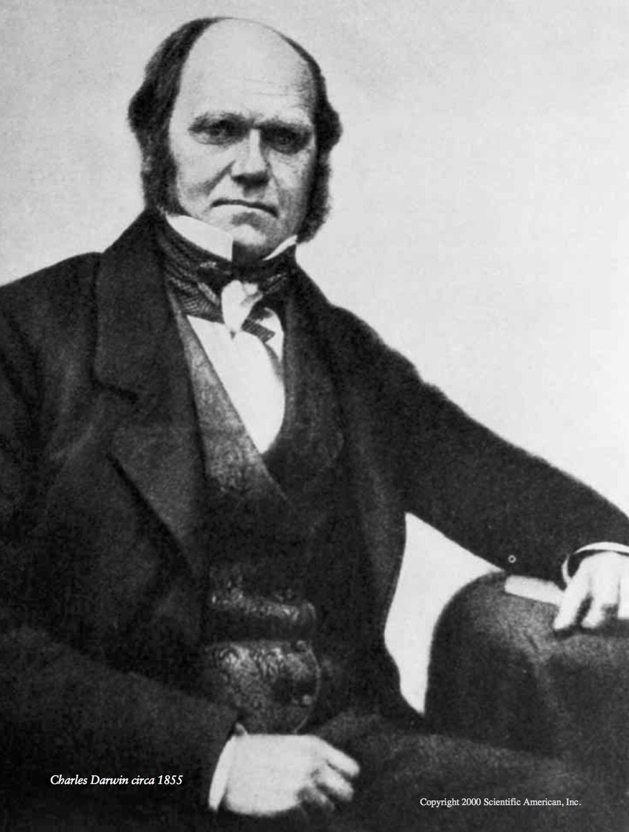 Scientific American's photo on Charles Darwin