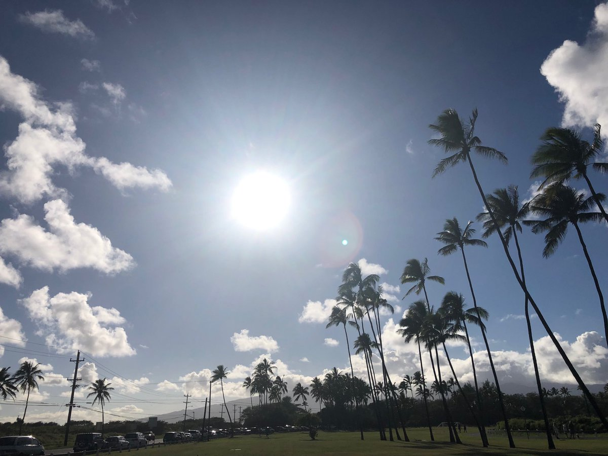 test Twitter Media - It's a beautiful warm day in Paia. #cmweather #magicalmaui #paia #sun #maui https://t.co/nc8iAFd1V6