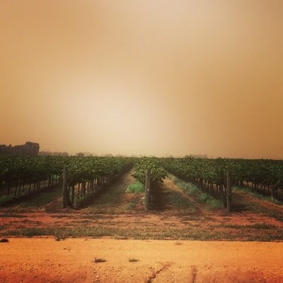 NakedWines Australia's photo on #duststorm