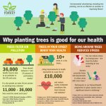Image for the Tweet beginning: #trees are good for our