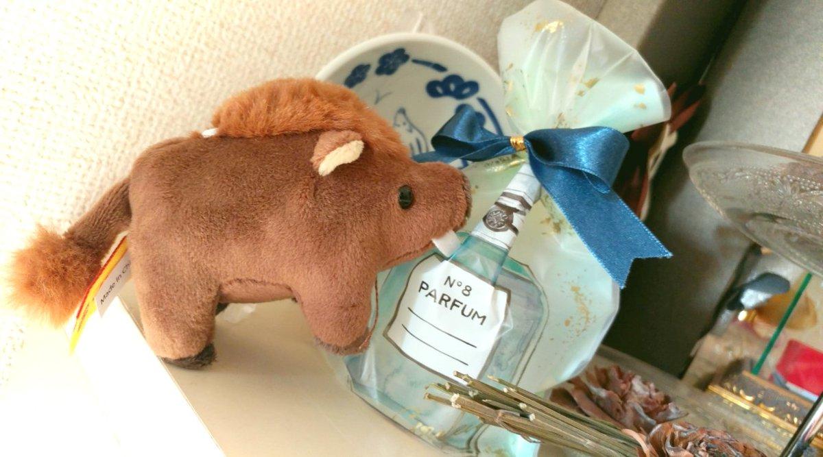 test ツイッターメディア - #女の子らしい ことを #アメブロ にアップしました! 初めて #精油 を買ってみたお話を! おしゃれとコメント頂け嬉しい!! https://t.co/bxmGWdtuWi #セリア で購入した香水瓶モチーフの #ラッピング袋 で香りを楽しんでいます! #お洒落さんと繋がりたい #カービー #シナモンロール #プリン #亥 https://t.co/w2htFEM9eQ