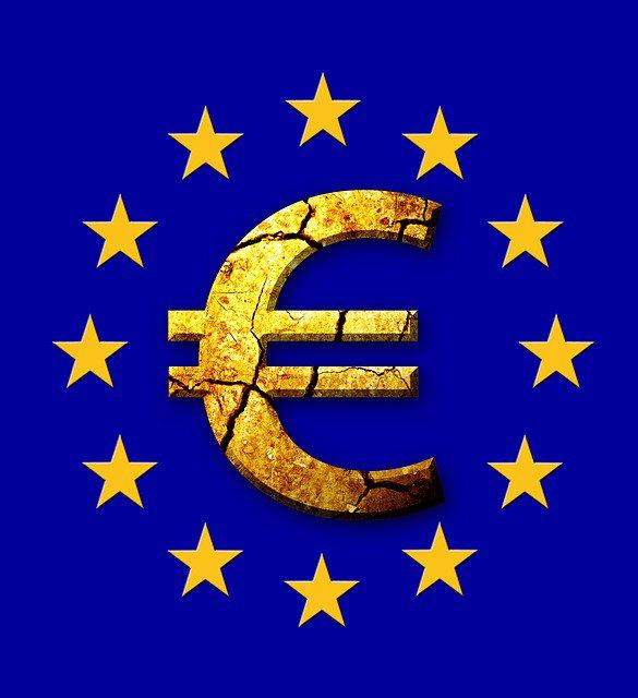 EuropeanSeed photo