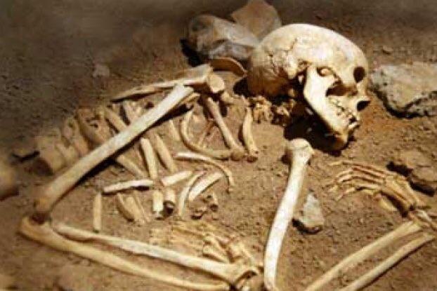 Bone carbon dating