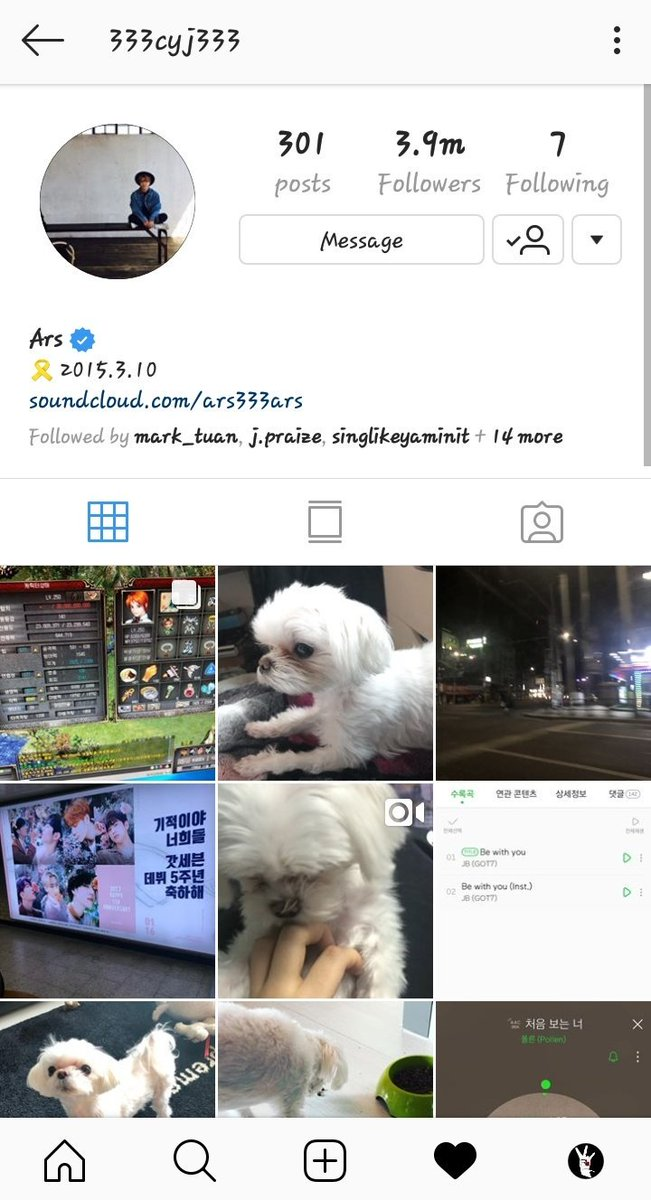 190213 Youngjae followed back GOT6 and the GOT7 instagram account again yay! Also the hashtags Maltipoo, Maltese, YoungjaeXSupreme and Gersang are back   - @GOT7Official @GOTYJ_Ars_Vita  #GOT7  #Youngjae #갓세븐  #영재<br>http://pic.twitter.com/lwZvBRP35b