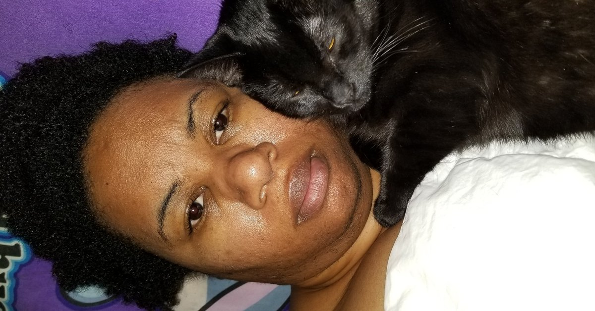 #SignsYouAreSingle When you cat fills sorry you are sleeping alone. <br>http://pic.twitter.com/MNL8Dezg2U