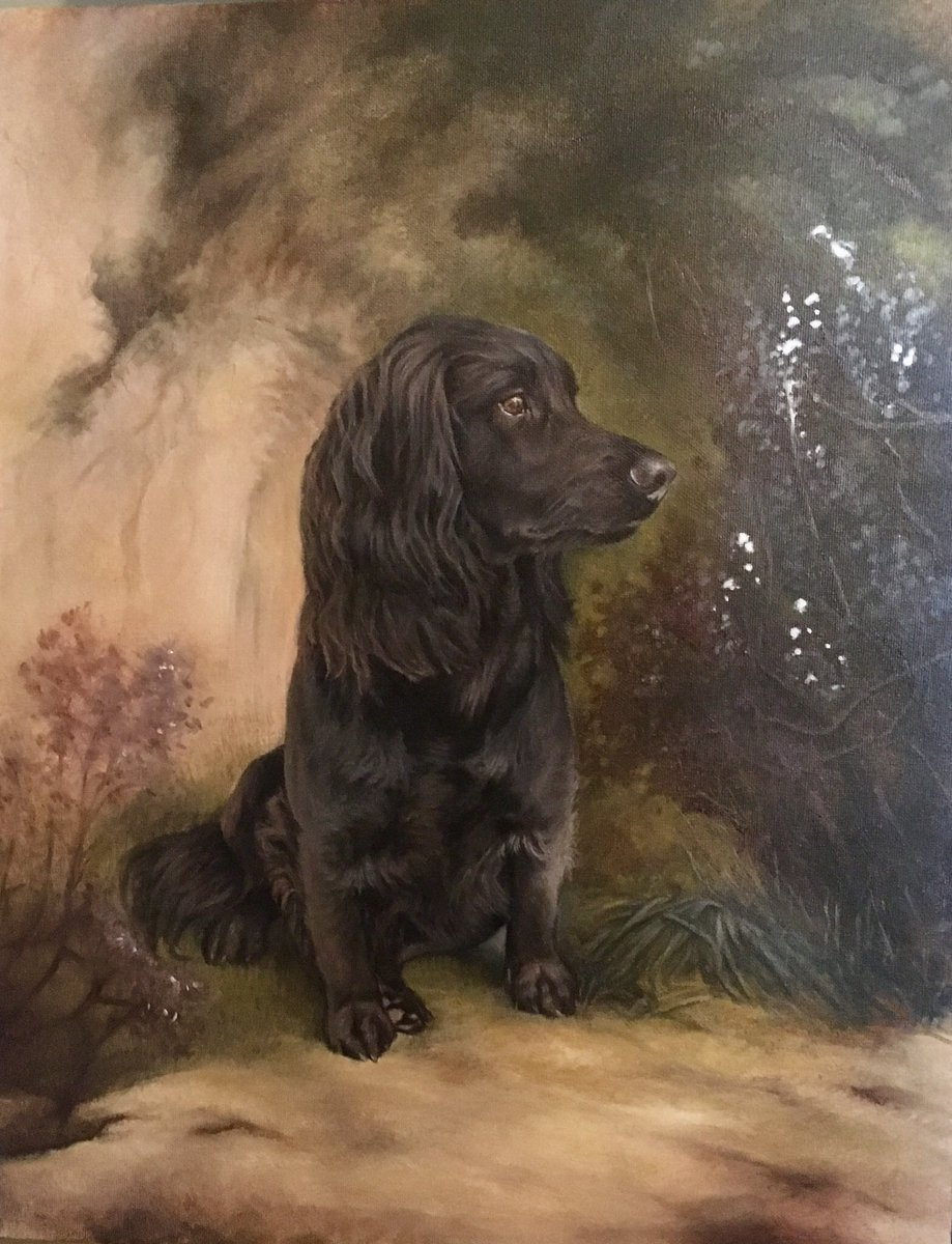 Looking for a portrait of your beloved four legged friend? Portraits in oils and charcoal. A range of sizes. For more information visit; http://www.dieudonneart.com    #handmadehour #woofwoofwednesday