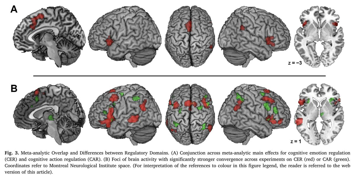 The human self-regulation system: Meta-analyses of >200 individual experiments show largely distinct networks for emotional vs. behavioural control  Domain-general self-control by parieto-frontomedial-insular core  Paper: https://tinyurl.com/y57jg53a Data: https://tinyurl.com/yyfb9m6y