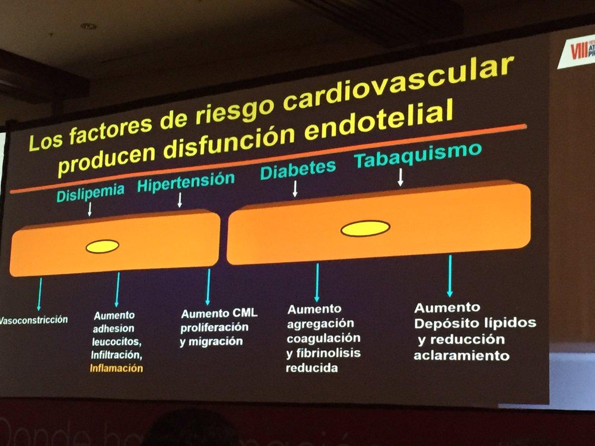 El endotelio y la inflamación vascular en la diabetes.
