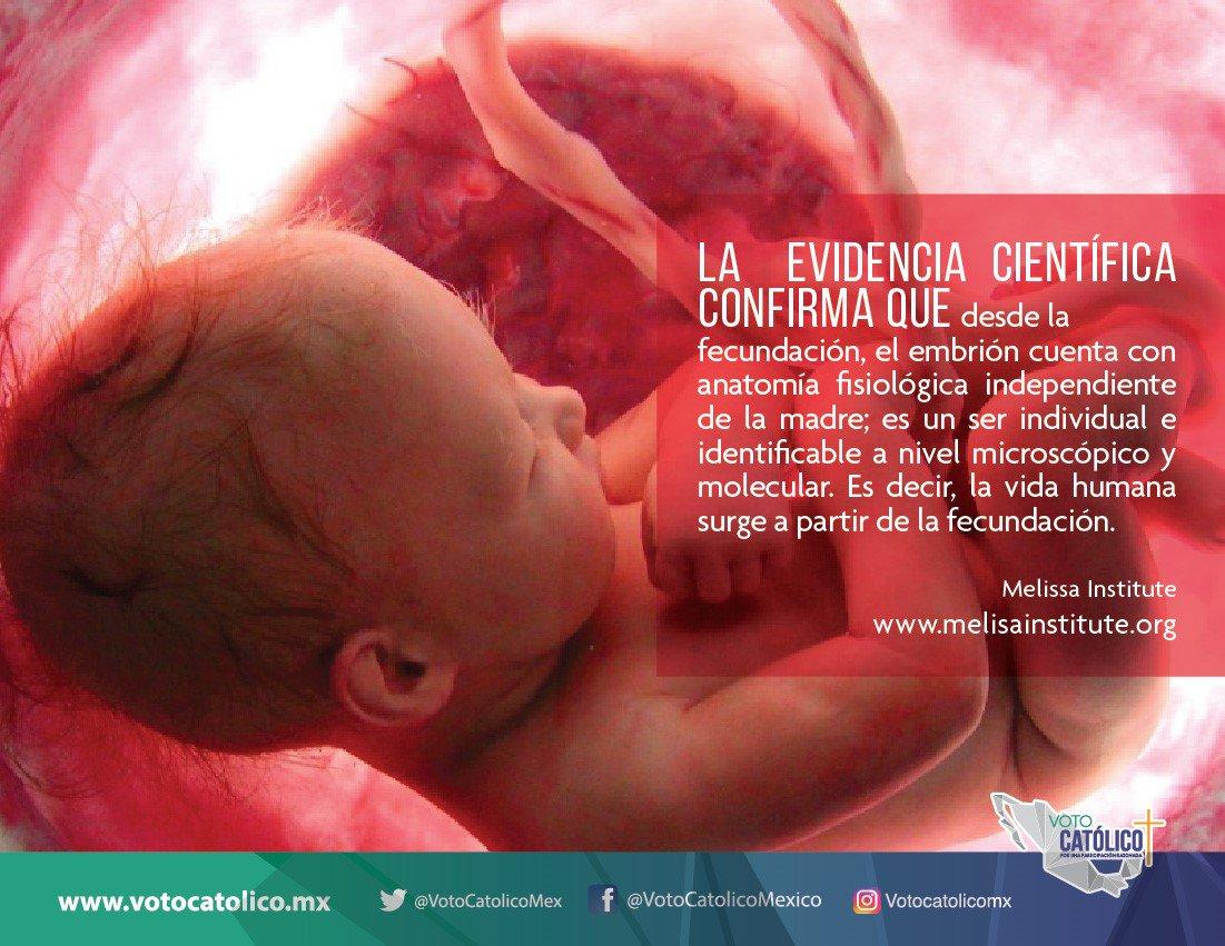 Voto Catolico's photo on #FelizMiércoles