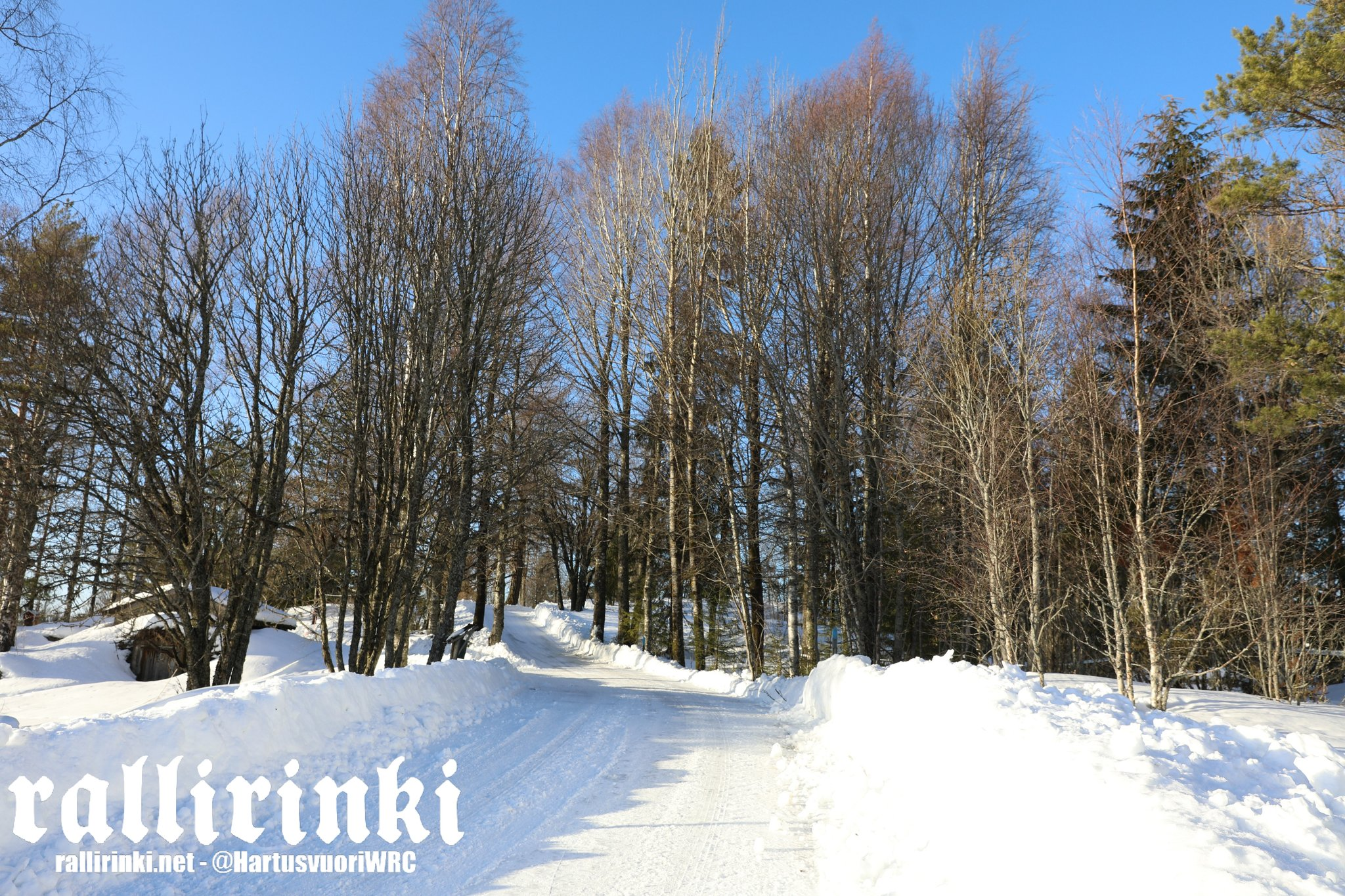 WRC: 67º Rallye Sweden [14-17 Febrero] - Página 2 DzTKxuaX0AAuFJi