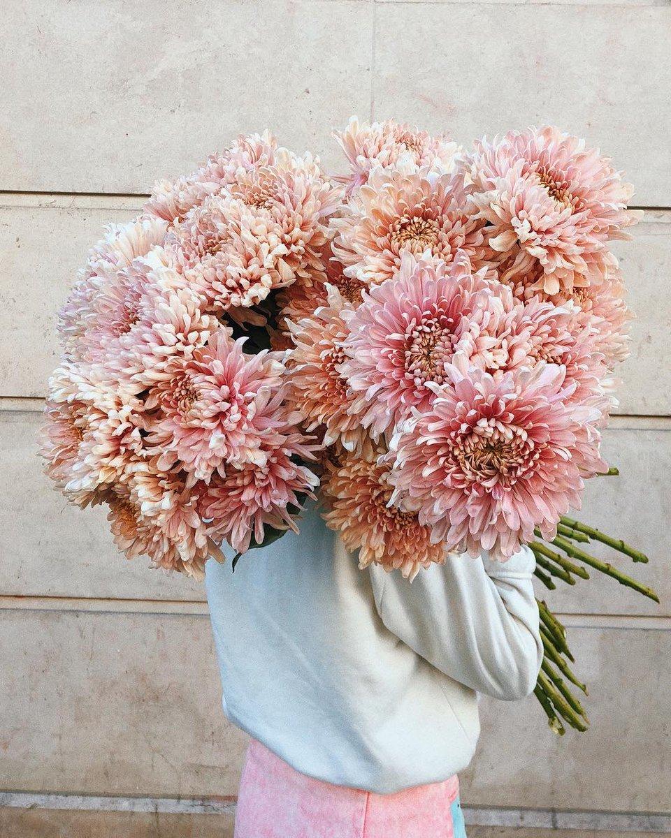 Bouquet De Fleur Pour St Valentin saint-valentin vogue lovers : où trouver le parfait bouquet