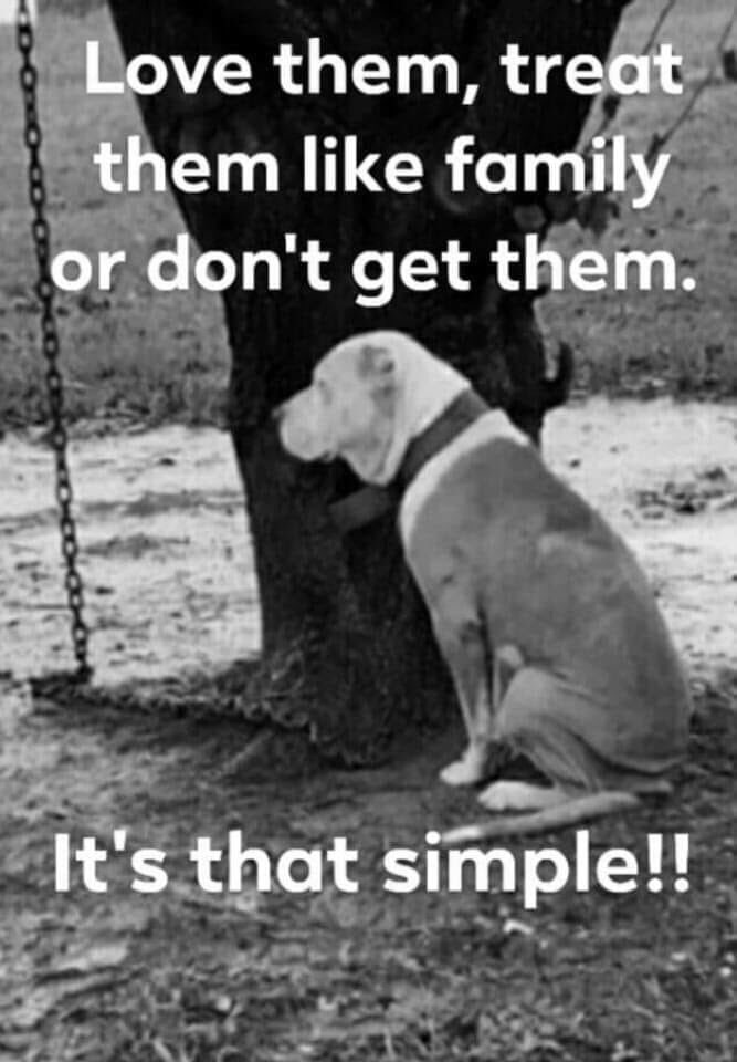 It's as simple as that!!!! <br>http://pic.twitter.com/TbstfQpnlj