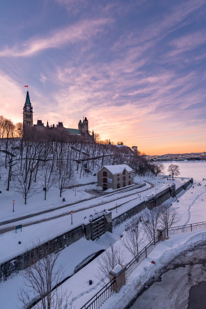 Sadik Elgallal's photo on #SnowMageddon2019