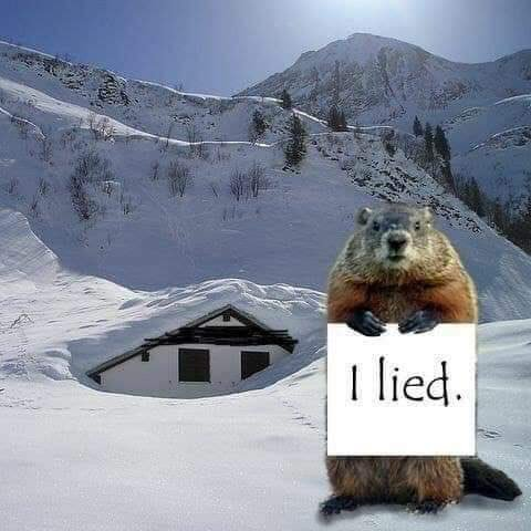 Marc Messier's photo on #SnowMageddon2019
