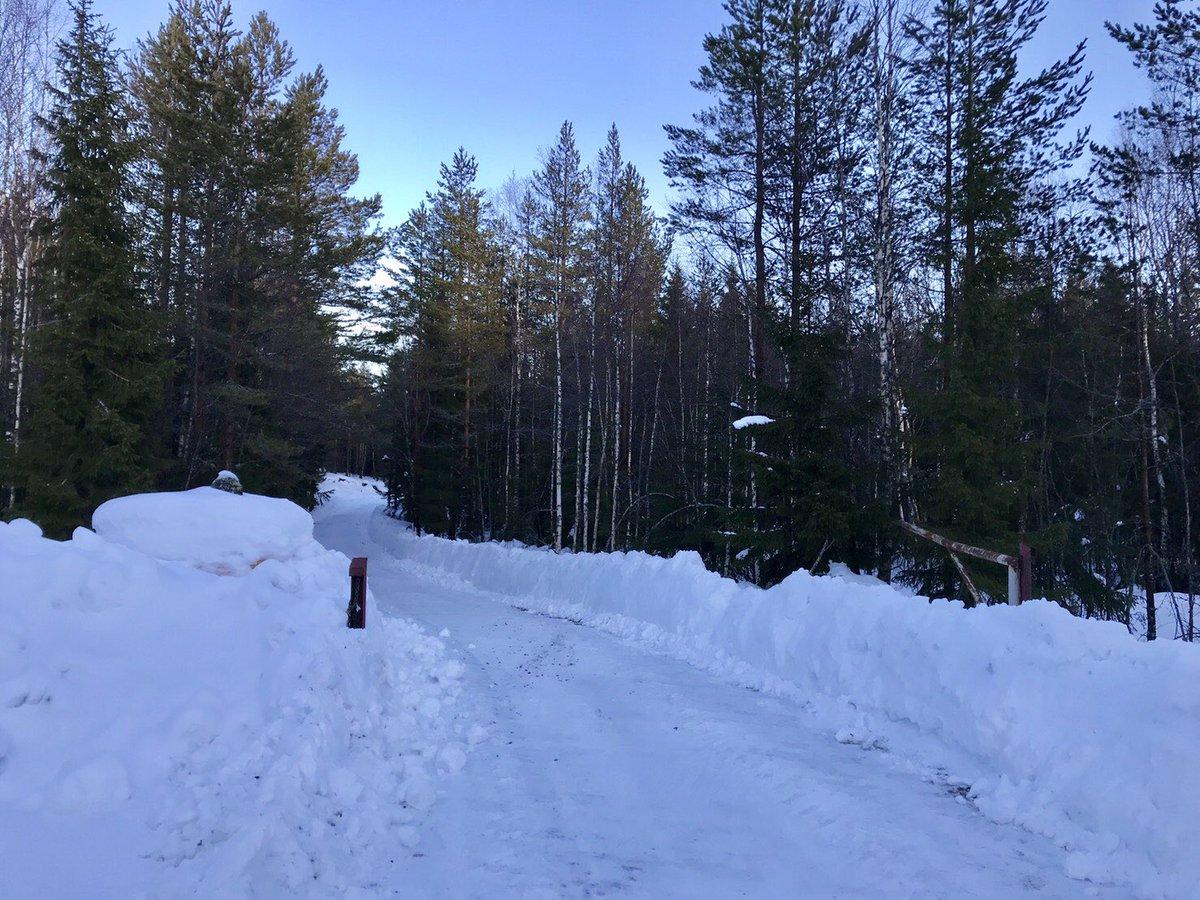 WRC: 67º Rallye Sweden [14-17 Febrero] - Página 3 DzVL6X3UwAYVe58
