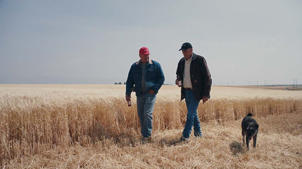 Budweiser is proudly brewed with 100% American-grown barley. #ThisBudsForYou