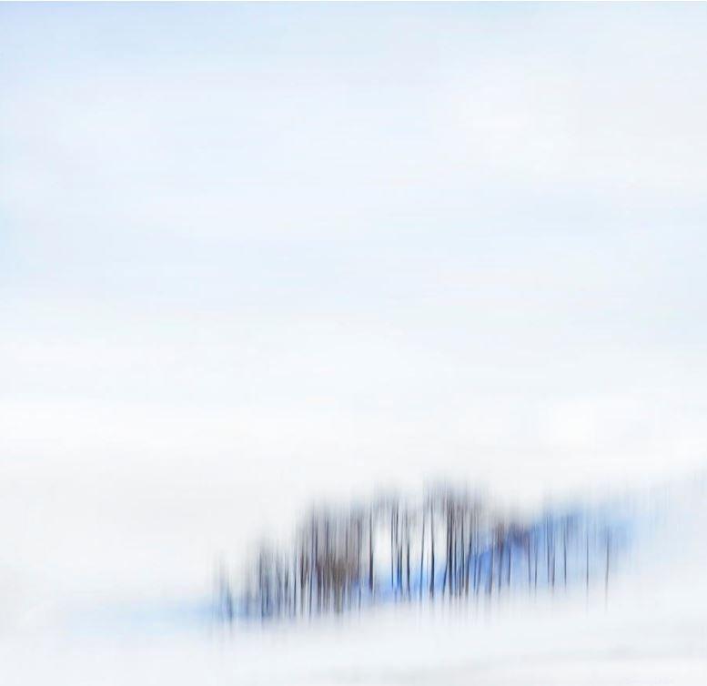 Minimal Trees https://theresa-tahara.pixels.com/featured/minimal-trees-theresa-tahara.html… #minimalism #minimalist #weather #snow #photography #Kamloops #snowscape #giftIdeas #landscape #landscapephotography