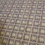大量のうさぎの切手が!ボスまで入ってる!すごい数!