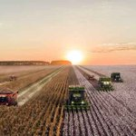 Challenges American Agriculture Needs to Overcome https://t.co/JcrrJKK98m