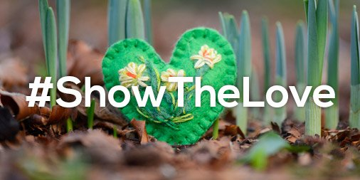 Why not #ShowTheLove this #Valentines Day and switch to green energy with @Ecotricity? @TheCCoalition http://natu.re/evSSKb