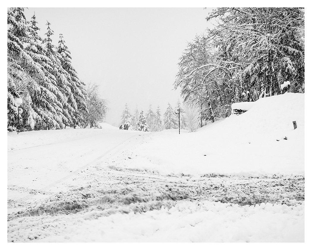 Dan Rice's photo on #SnowMageddon2019