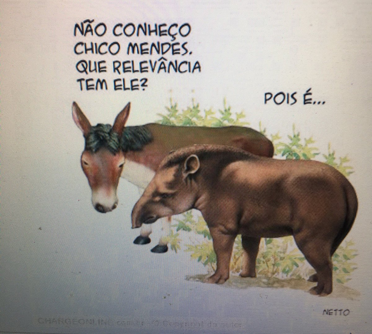 Salve a Amazônia! O ministro do Meio Ambiente é Boneco de Apartamento!