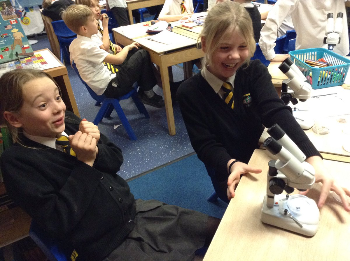 test Twitter Media - Awe and wonder!!! @RomileyPS Year 5 are astounded at what they can see through these amazing microscopes. Thank you @RoyalMicroSoc 👨🔬👩🔬🔬🔬 https://t.co/TRadFaKfvP