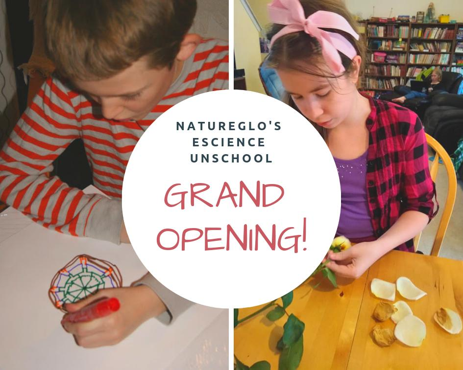 It's the Grand Opening for NatureGlo's eScience Unschool! This is a unique online social learning platform. Check it out: http://sbee.link/btxha9du46#unschooling #unschool #unschoolers #unschooled #unschoollife #UnschoolingMom2Mom #unschoolingmom #unschooler #unschoolingrockspic.twitter.com/bhi2w3hFTl