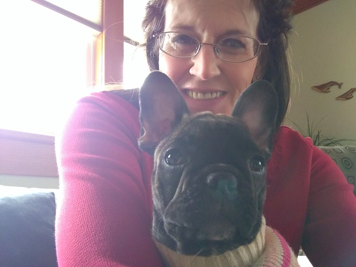 #ValentinesDay My newest charge #FrenchBulldog Bella I get to sit her til Feb 26th Her humans went to Hawaii <br>http://pic.twitter.com/Q5Cfuv5AkD
