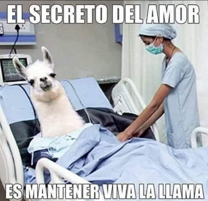 Jajaja! Vaya secreto! #FelizJueves