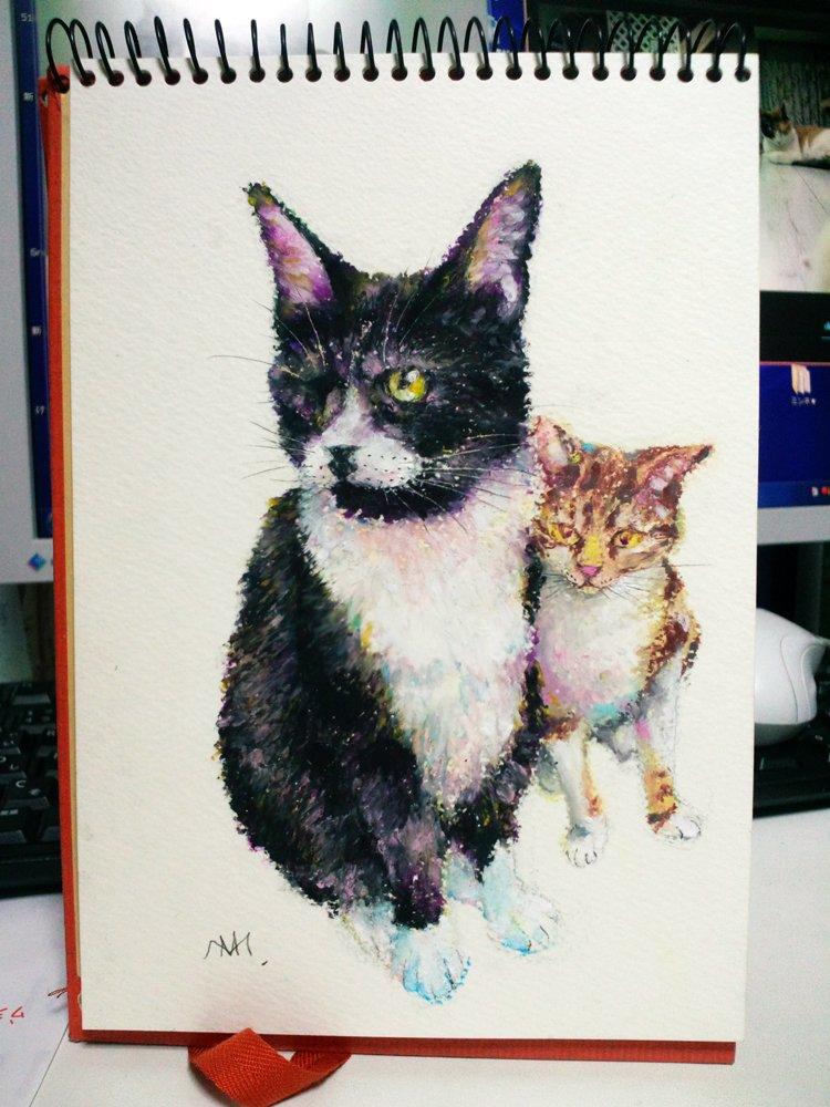 銀丸(ちょーこー)兄貴を慕う風間三号さん^^  保護猫カレンダー販売中。 信州猫日和1Fと通販で BASE https://snb.base.shop/ minnne https://minne.com/@marimiyuki  よろしくお願いします。  #ネコの日 #猫 #ねこ #保護猫 #信州猫日和 #ぺんてるパス #cat #oilpastel #illustration