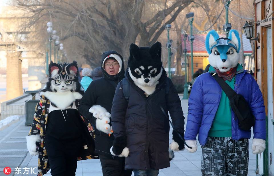 Brrr! Tourists wear funny animal-like hats to withstand the cold in Harbin, Northeast China's #Heilongjiang province, on Feb 12, when temperatures fell as low as -22C