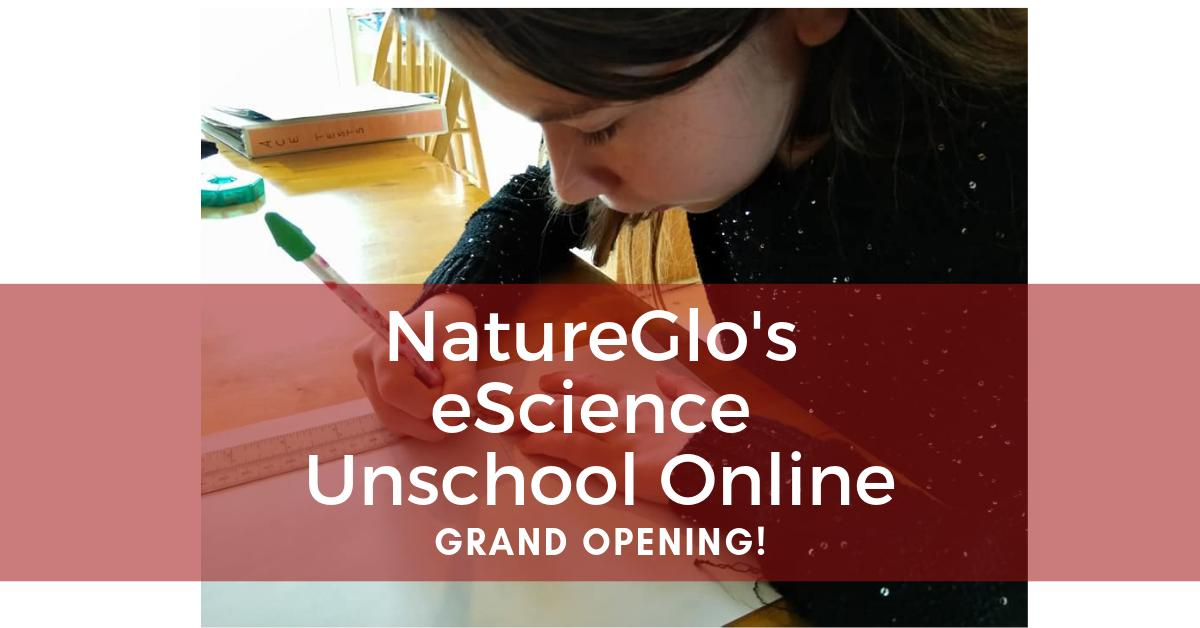 It's the Grand Opening for NatureGlo's eScience Unschool! This is a unique online social learning platform. Check it out: http://sbee.link/btxha9du46#unschooling #unschool #unschoolers #unschooled #unschoollife #UnschoolingMom2Mom #unschoolingmom #unschooler #unschoolingrockspic.twitter.com/mqn8u2RINb